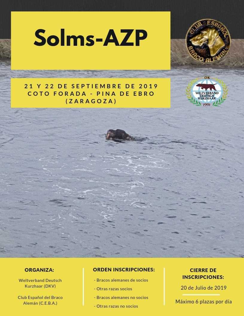 Solms 2019